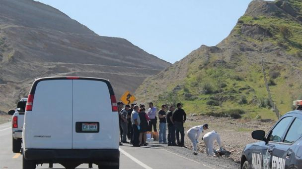 Six men have been shot to death in Ensenada, four of them in Valle de Guadalupe wine route