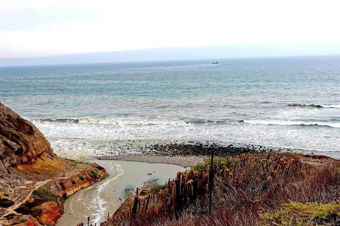 Cofepris alerts of polluted beaches in Baja California and Puerto Vallarta